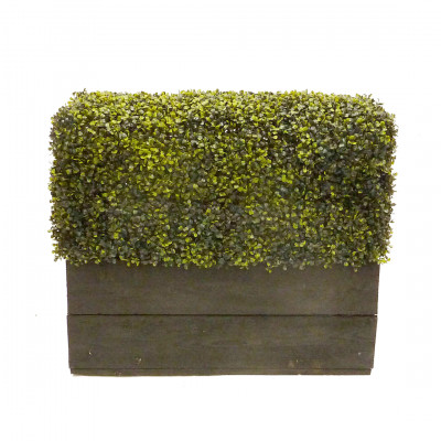 Artificial Boxwood Plinth Rental